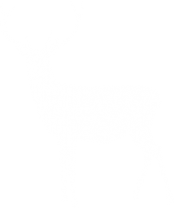 Free Christmas music white deer